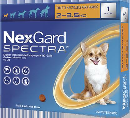 NEXGARD SPECTRA XS 1 CHEWAB X 10 (2-3.5kg)