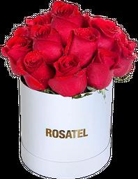 Sombrerera blanca 15 Rosas rojas