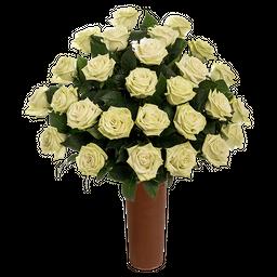 25 Rosas Verdes de Exportación