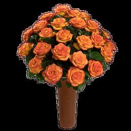 25 Rosas Bicolor Amarillo y Naranja de Exportación