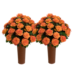 50 Rosas Bicolor Amarillo y Naranja de Exportación