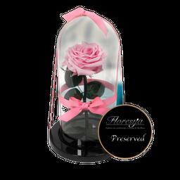 Rosa Encantada Preservada Rosada 1 U