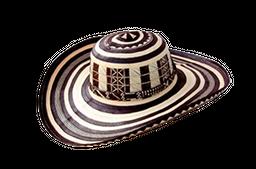Sombrero Children's Palace Vueltiao