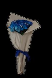 Hortensias Golpe de Agua Ramo de Colores Azules