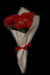 Hortensias Golpe de Agua Ramo de Colores Rojas