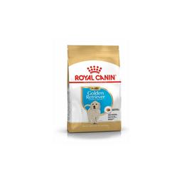 Royal Canin Alimento Para Perro Golden Retriever Puppy 3 Kg